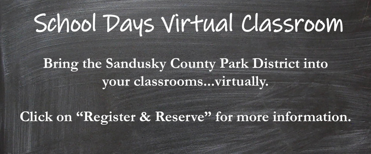 chalkboard for school days virtual classroom